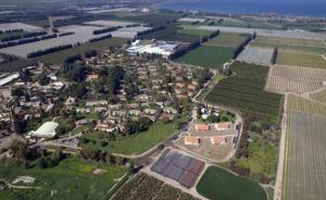 走访以色列基布兹农场:平等主义理想的前世今生