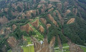 中国游客亲历日本北海道地震:因台风飞到札幌却遭遇地震