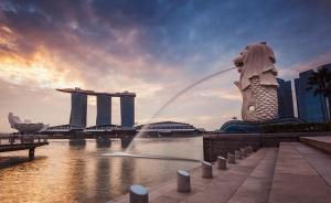 超80家新加坡企業將現身進博會,尋找中國市場新機遇