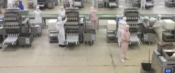 三全灌汤水饺检出非洲猪瘟病毒,湖南湘西要求食药监紧急排查