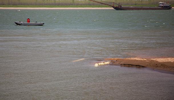 63城将彻查长江入河排污口:不查清楚,长江水能保护得好吗