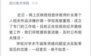 """叶永青被指抄袭9天后,四川美院低调发声称开展""""核查"""""""