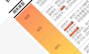 图解|在中国,山林火灾的损失如何用保?#24352;?#20184;?