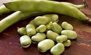 下厨房| 最佳赏味期限20天,吃足春意的蚕豆过季不候