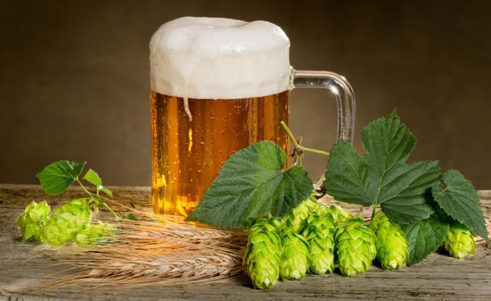 口感清爽的工業啤酒,喚醒了春末夏初的疲乏味蕾