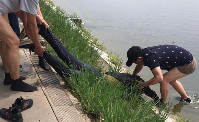 暖闻|长春市应急管理局局长副局长营救溺水者,获评见义勇为