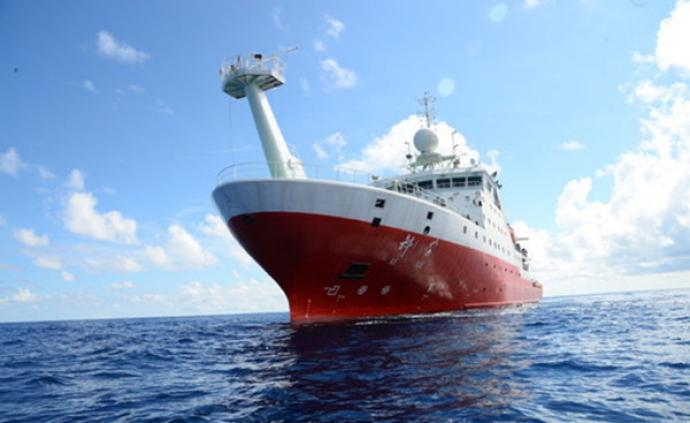 """大海中的""""小强""""成海洋垃圾处理者:能在深海极端环境下生存"""