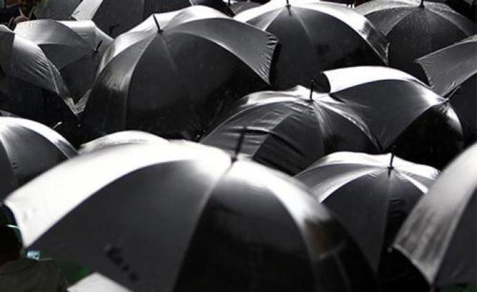 """哈爾濱呼蘭區上周已打掉11""""傘"""",環保、國土領域多人涉案"""