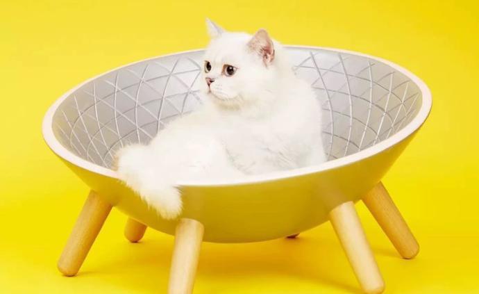 中科院天文台跨界卖猫窝,合作网店所属公司列入异常经营名录