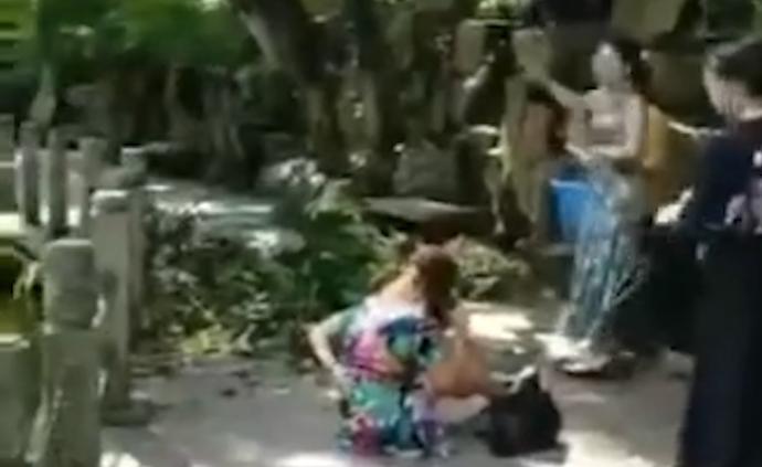 岳麓山岳王亭景區樹干掉落,砸傷4人