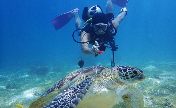 《海》:愛表演的潛水員們,把海底世界搬上舞臺