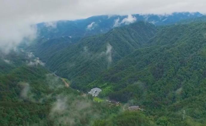 钱江源国家公园︱在钱塘江源头寻找新生活