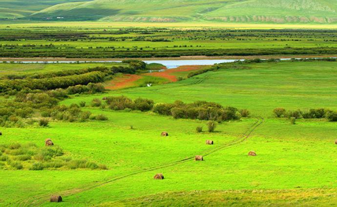 加强草原生态系统完整性?;?,我国将推动建草原类型国家公园