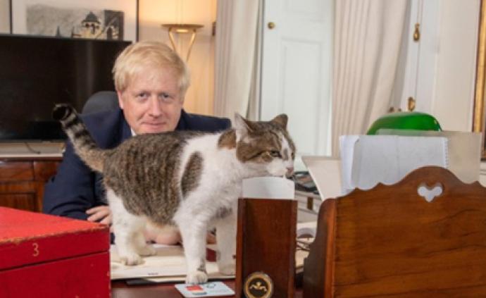 """英首相约翰逊上任两周首发办公照,与""""首席捕鼠官""""合影"""