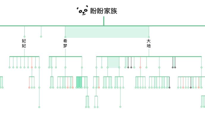 图解|承包了旅外大熊猫的1/3,这个家族你了解吗?