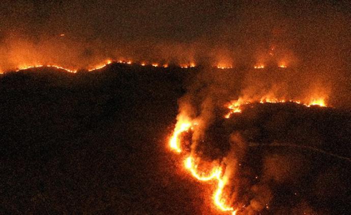 亚马孙雨林大火难控,巴西总统反对外部干预