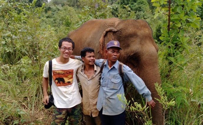 當我們談論保護大象時,我們在談論什么?