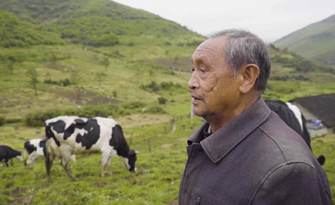 南山國家公園︱守望在牧場的耄耋奶牛養殖戶