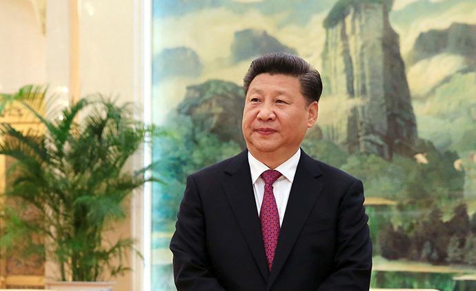 習近平會見中國紅十字會第十一次全國會員代表大會代表