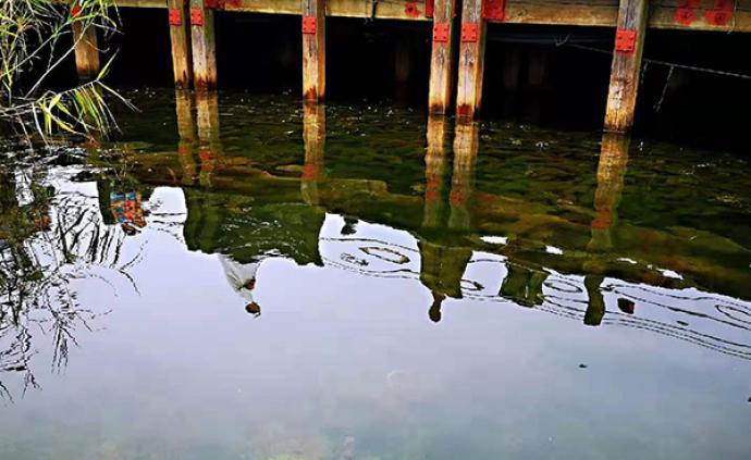 江苏治水攻坚:太湖水质持续改善,连续11年未现大面积湖泛