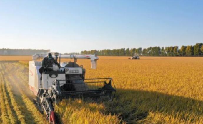 专家解读粮食安全白皮书:未来仍要把饭碗牢牢端在自己手上