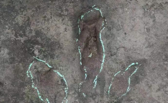 四川宜賓拍到巨大恐龍腳印,專家:是侏羅紀晚期實雷龍留下的