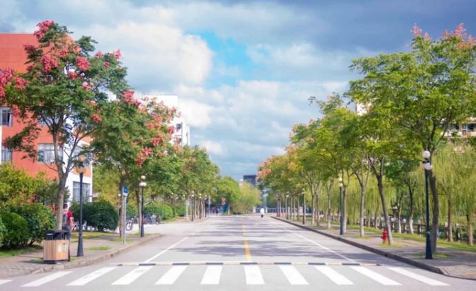 在上海这35所高校里,遇见秋天、共赏秋意