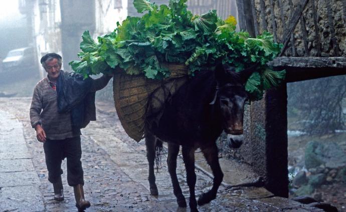 隐藏的伊比利亚①:拉斯乌尔德斯,没有面包的土地