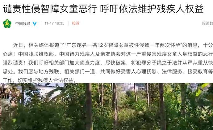 中国残联:强烈谴责性侵智障女孩恶行