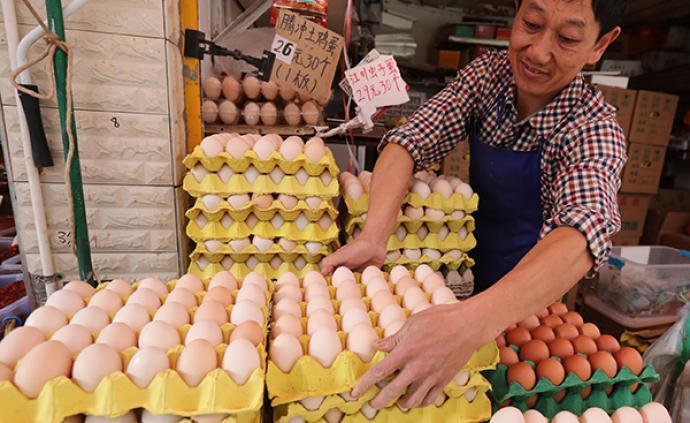 雞蛋價格連續12個工作日下降,月內降幅近20%