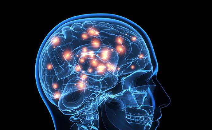 """專家與新手大腦有何不同?研究人員:""""專家""""神經網絡更專注"""
