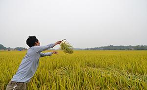 周其仁、华生、贺雪峰过招:近日农村土地制度之争脉络始末