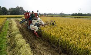 """全国约140个县试点给农地""""上户口"""",浙江推进最快"""