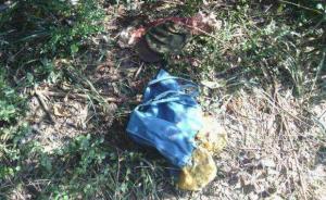 湖南衡阳非法打猎致人死亡案11人身份查清,开枪者已被批捕