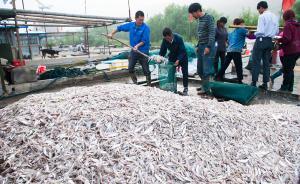 非洲观察    中国远洋渔船在非洲摊上大事了