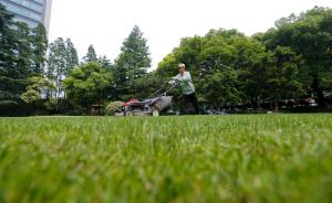 """上海建""""绿道""""串联绿地和公园,实施万根高架立柱立体绿化"""