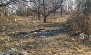 河北保定11岁女孩遇害,被发现时双手被绑全身赤裸遭到焚烧