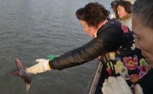 直击  众人上海黄浦江边放生3万条鲫鱼,从江苏运来共8吨