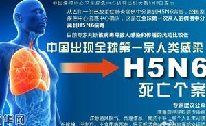中国确诊全球首例H5N6死亡个案,专家:病毒传播风险低