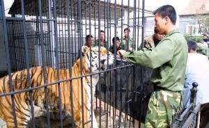 国家林业局:全国整顿野生动物驯养繁殖,禁观众近距离接触
