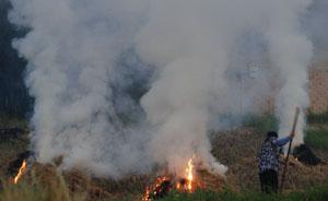 """江苏秸秆禁烧期""""第一把火""""燃起,南京一区环保局长被停职"""