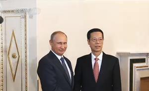 普京会晤张高丽:确认9月赴华出席抗战胜利70年纪念活动