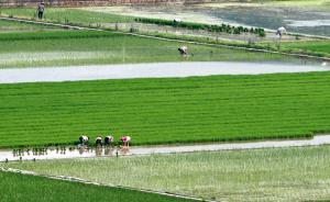 浙江鼓励农民工进城落户,但现阶段不得剥夺原籍地土地权益