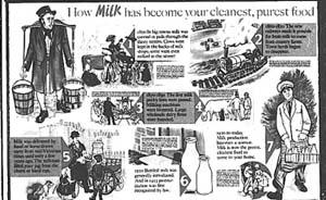 史坛一周︱19世纪伦敦牛奶掺假