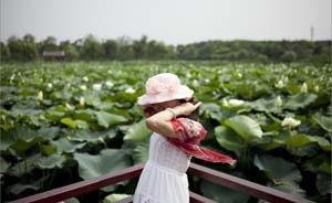 上海5座郊野公园2017年开园,首批获土地整治资金支持