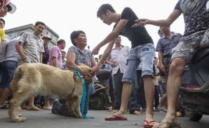"""玉林狗肉节成世界话题,媒体吁""""政府必须介入"""""""