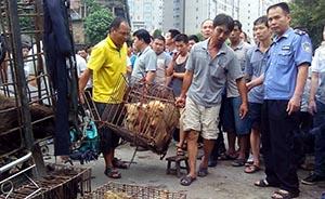 现场虐狗行为不断,有市民怀疑爱狗者假扮狗贩丑化玉林