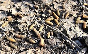 南京大屠杀纪念馆附近发现一批中国守军子弹