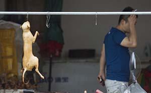 玉林狗肉节17家餐馆停售,官方高速路口劝返2辆运狗车