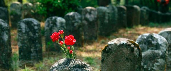 寻访无名烈士墓(上)平型关556具遗骨,只找到72个名字